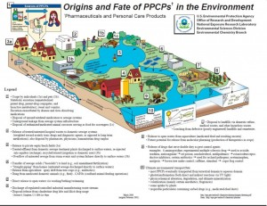 How PPCP's end up in the environment